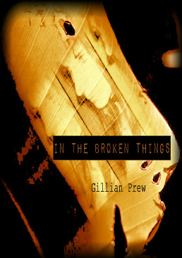 In the Broken Things