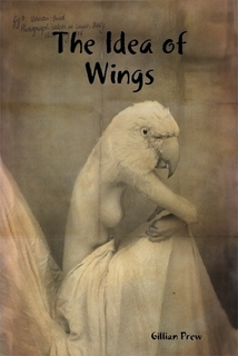The Idea of Wings